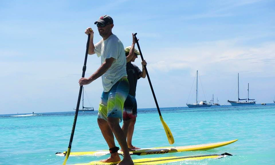 Stand Up Paddleboard Rental In Alameda