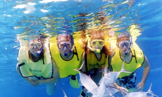Snorkeling Tour In Cozumel