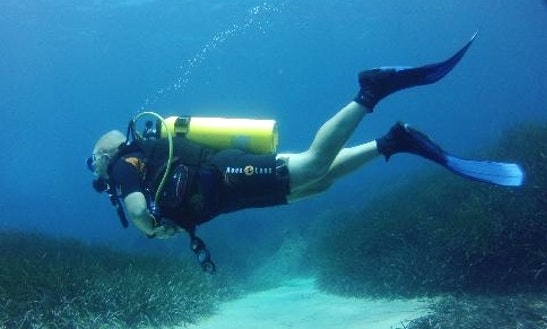 Diving In Coral Bay