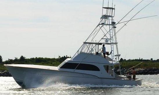53ft Sport Fisherman Boat Charter In Lewes, Delaware