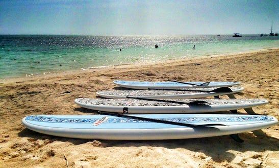 Sup Rental, Lesson & Yoga In Punta Cana