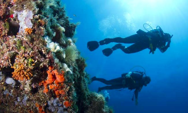 Diving Trips in Manacor, Spain
