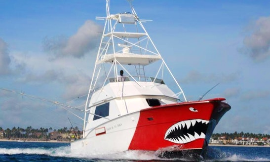 Fishing Charter On Sportsfisherman Yacht In Punta Cana, Dominican Republic