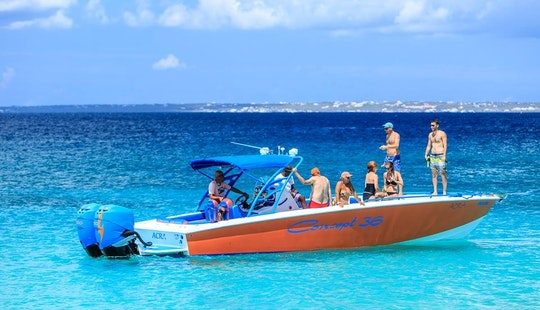 Awesome Speedboat Excursion And Beach Tour In Simpson Bay, Sint Maarten