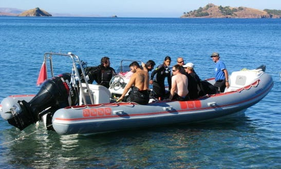 Diving Trips In Lesvos, Greece