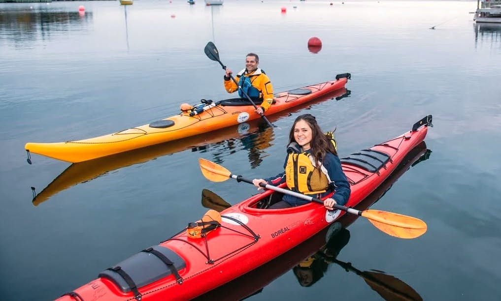 Kayaking Rental and Trips in Chester