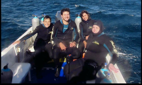 Scuba Diving In Puerto Madryn