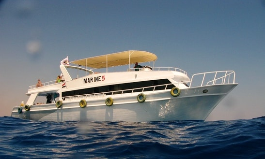 Daily Dive Boat Marine 5 In Sharm El Sheikh-south Sinai