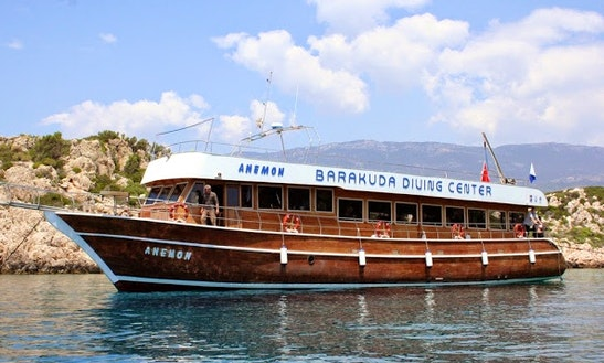 Anemon Diving Boat In Antalya