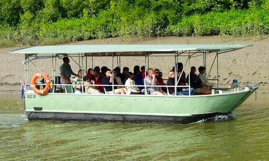 Crocodile Safari Tour Boat, Proserpine River, Airlie Beach, Whitsundays
