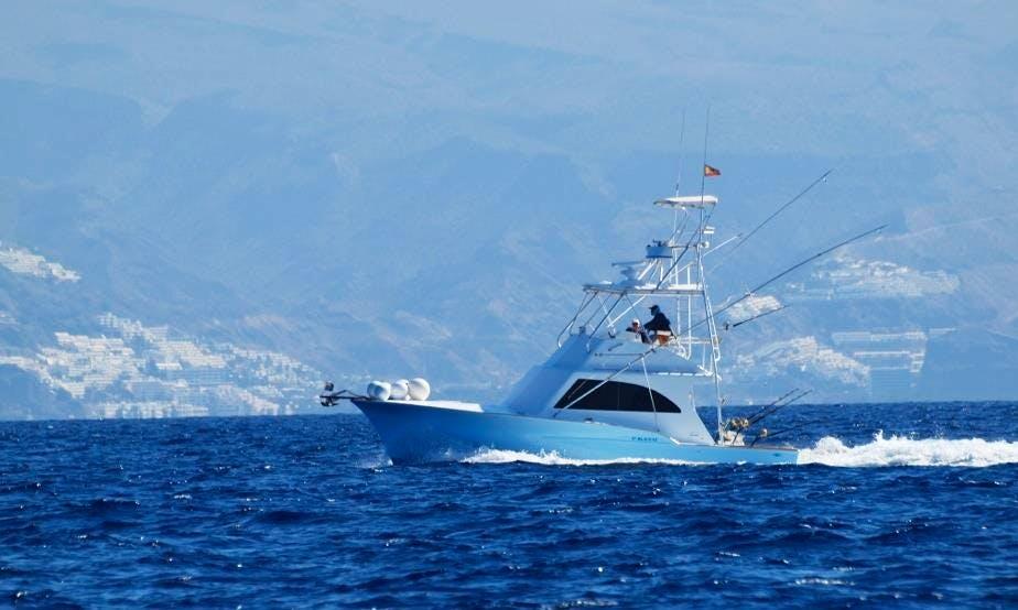 31' Sport Fisherman Fishing Trips in Mogan, Spain