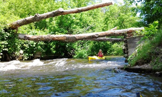 Single Otter Kayak Rental & Trips In The Sturgeon River