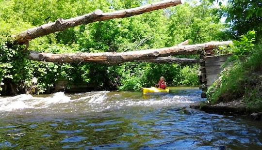 Single Otter Kayak Rental & Trips In The Sturgeon River