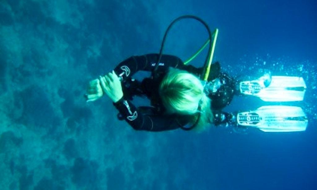Scuba Diving In Diani Beach Getmyboat