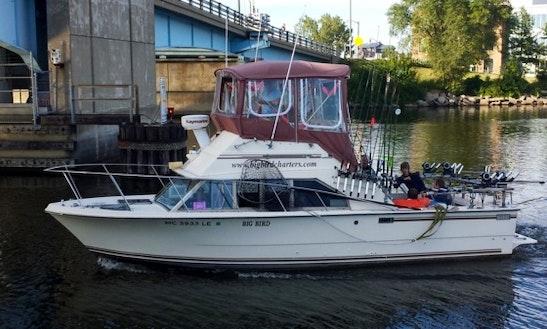 28ft Sport Fisherman Boat Charter In Saint Joseph, Michigan
