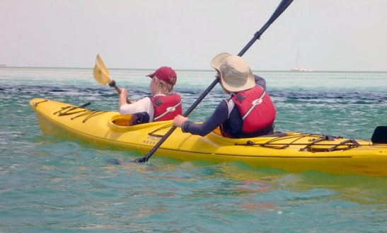 Tandem Sit-on-top Kayak Rental In Key Largo In Key Largo
