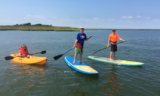 Single Kayak Rental In Beach Haven, New Jersey