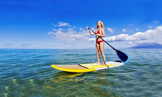 Stand Up Paddleboard Rental In South Padre Island
