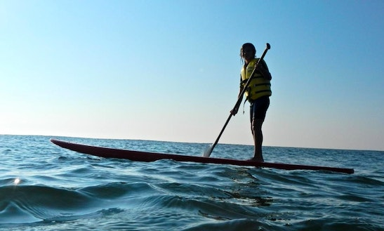 Paddleboard Rental & Lessons In Long Beach Township, New Jersey