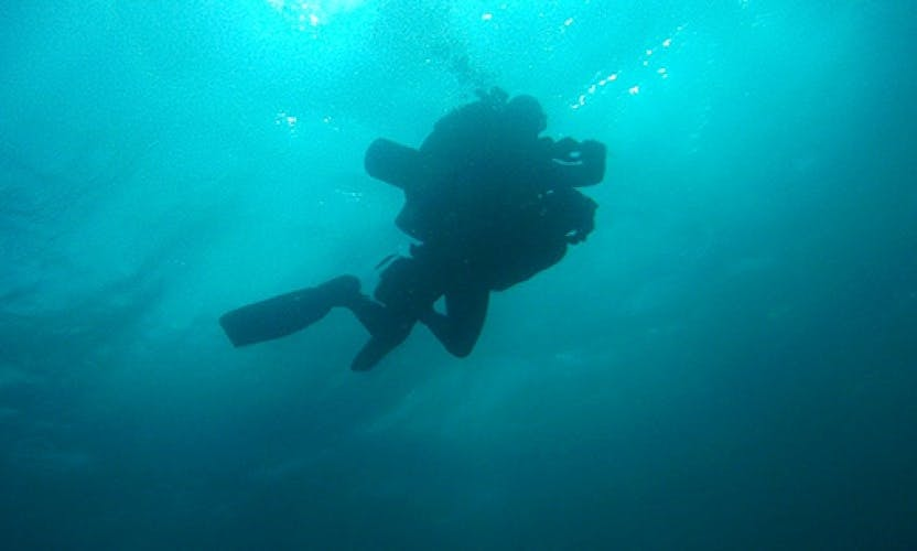 Learn to Dive In Managua