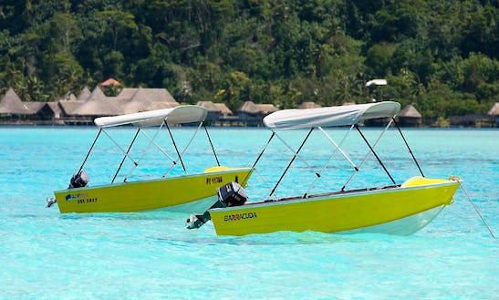 Quintrex 355 Dart 6hp Rental In Bora Bora