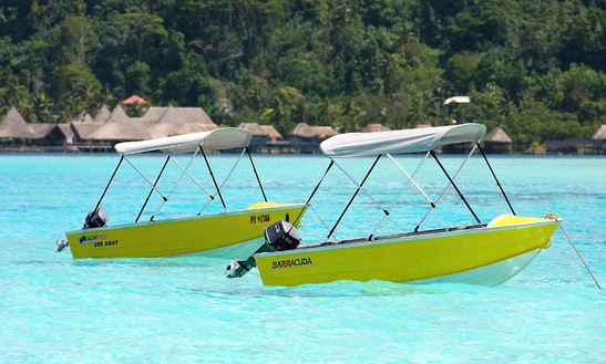 Quintrex 355 Dart 6hp Rental In Bora Bora