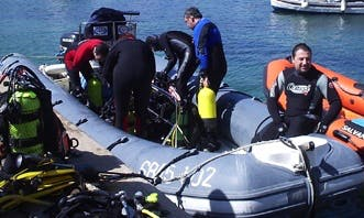 Learn to Dive and See the Colourful Marine Life in Llafranc Ocean