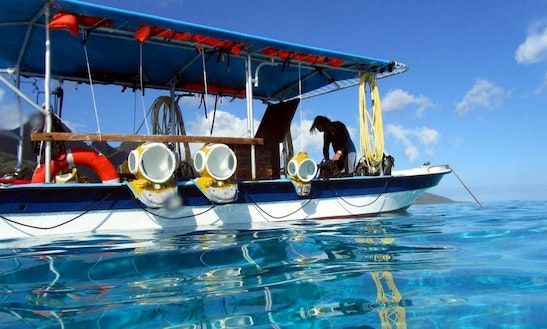 Snorkeling Trips In Moorea, French Polynesia