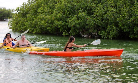 Awesome Guided Kayak Day Tour In Stock Island, Florida!