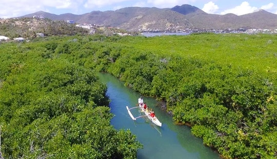 Mangrove Paddle Tour In Grand-case