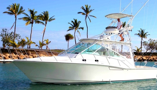 Enjoy 35 Ft Cabo 35 Express Fishing Charter In Kapolei, Hawaii