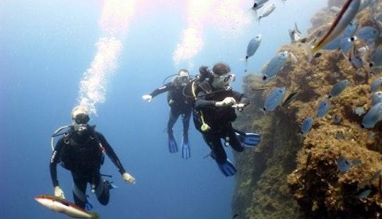 Learn The Basics Of Scuba Diving In Santorini, Greece