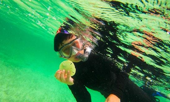 Scuba Diving In Mangrove Cay