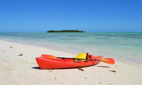 Guided Kayak And Snorkeling Tour In Mangrove Cay