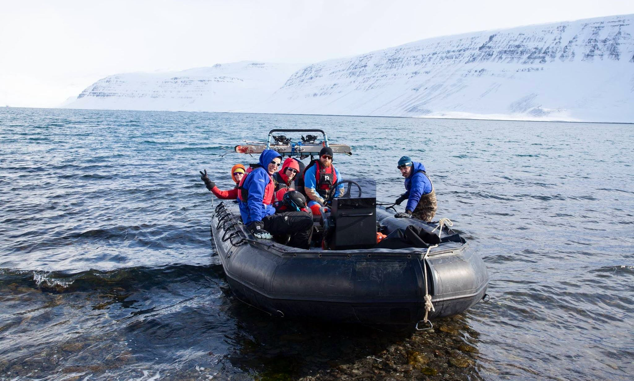 Wildlife Tours with Experience Guide in Isafjorður, Iceland