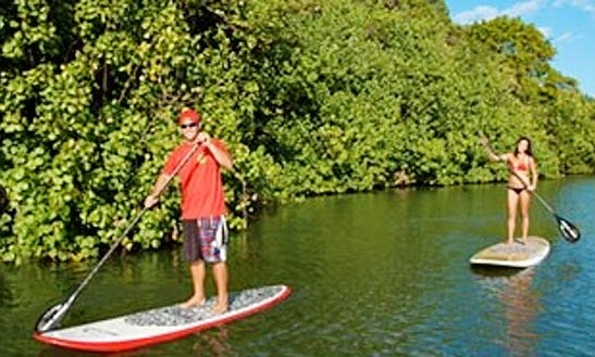 Paddleboard Rental & Trips In Kapaa, Hawaii