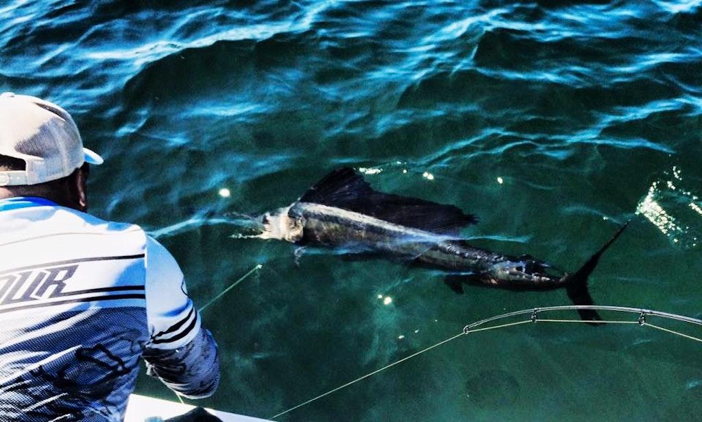 35 39 sea hunter fishing boat in madeira beach getmyboat for Madeira beach fishing charters