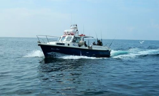 Head Boat Fishing Trips In Cork, Ireland
