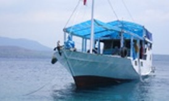 Komodo Island And Rinca Island Tour In Indonesia