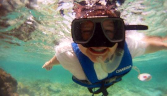 Snorkeling Trips In Oranjestad, Aruba