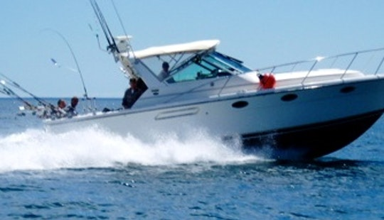 33' Tiara Lake Michigan Charter Fishing-waukegan, Il