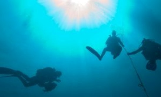Diving Trips In Pixvae, Panama
