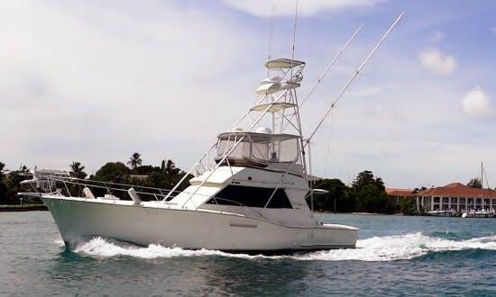 "Enjoy 48 ft ""Chubasco"" Hatteras Sportfish Fishing Charter In Nassau, New Providence"