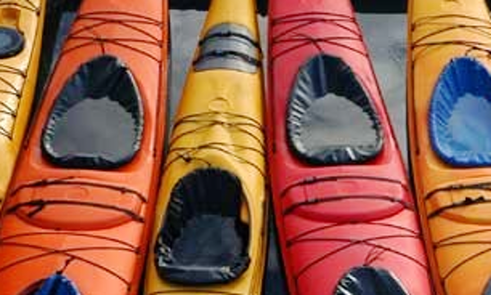 Necky Ocean Single Kayaks For Day Trippers In Vancouver, Bc