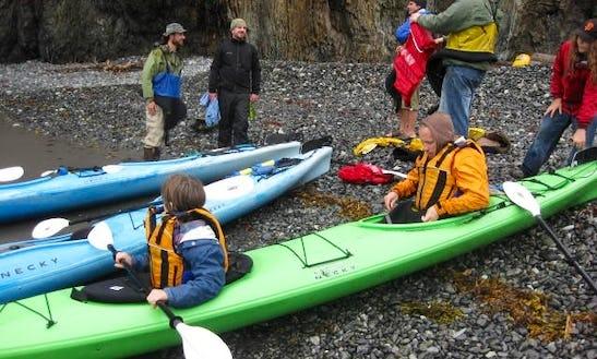 Tandem Kayak Rental In Homer