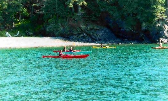 Single Kayak Rental In Homer