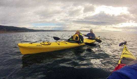 Half Day Kayak Tour In Punta Arenas