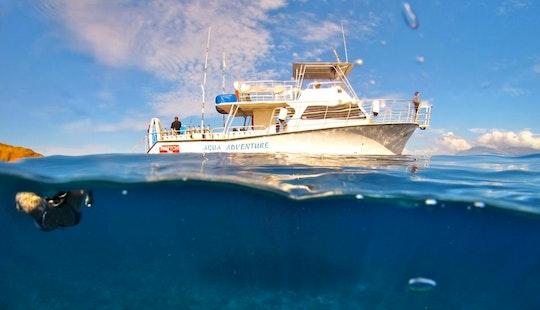 An Amazing Snorkeling Experience In Wailuku, Hawaii