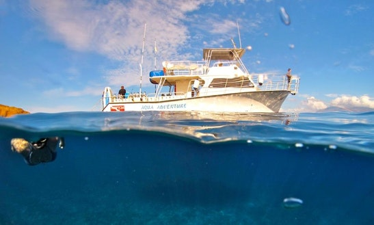 An Amazing Snorkeling Experience In Wailuku, Hawaii