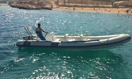 Rib Rental In Sharm El Sheikh